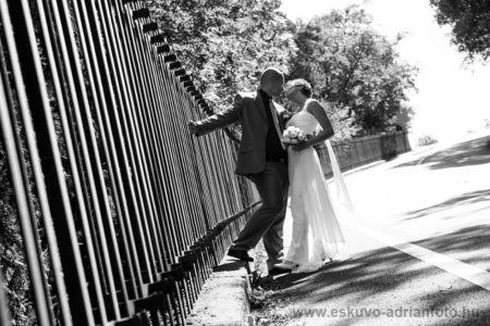 esküvő fotó Pannonhalma